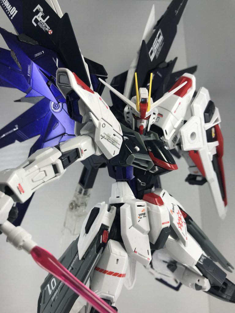 ★電撃ホビー掲載★ MG フリーダムガンダム ver.2.0 オリジナルカラーリング アピールショット2