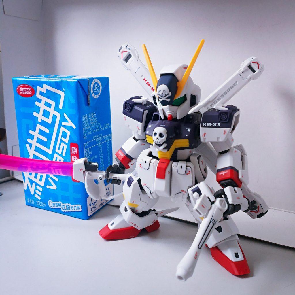 SD Cross Bone Gundam Full Cloth アピールショット2