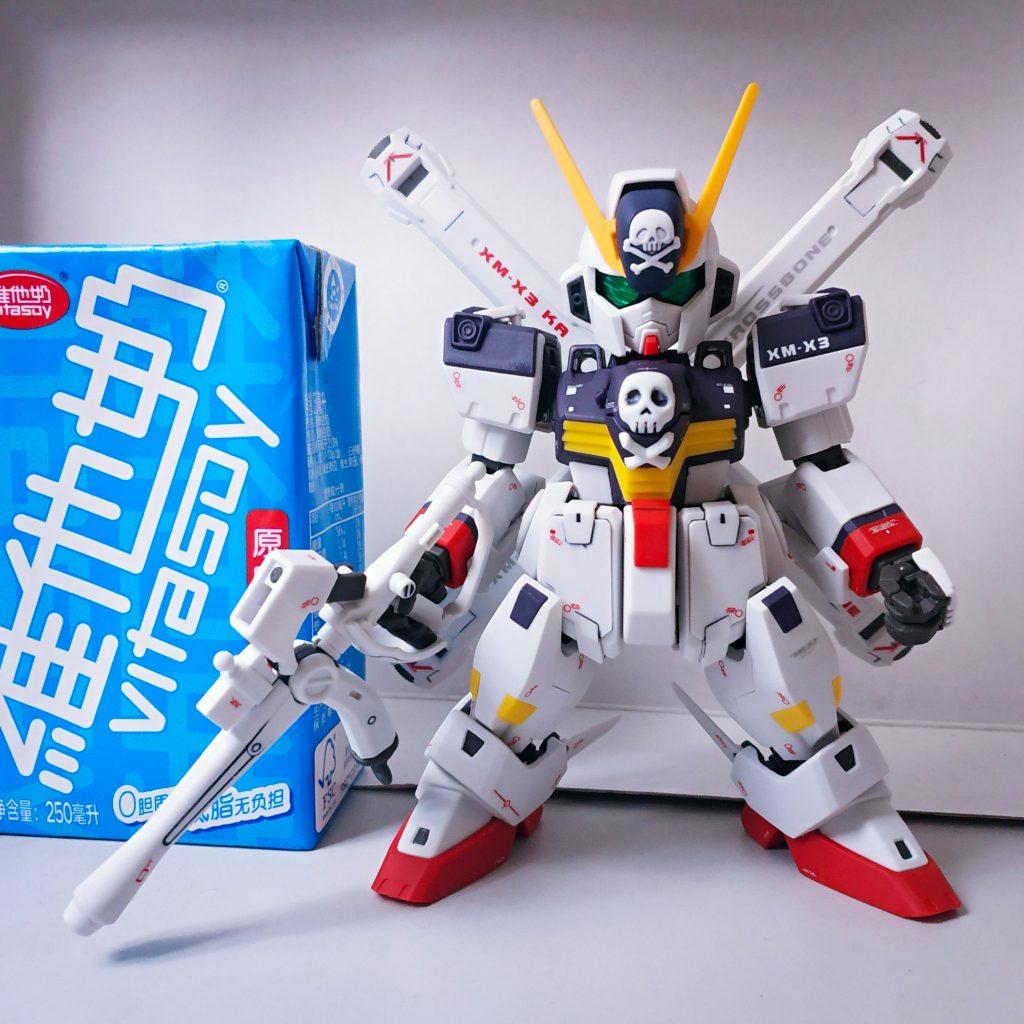 SD Cross Bone Gundam Full Cloth アピールショット1