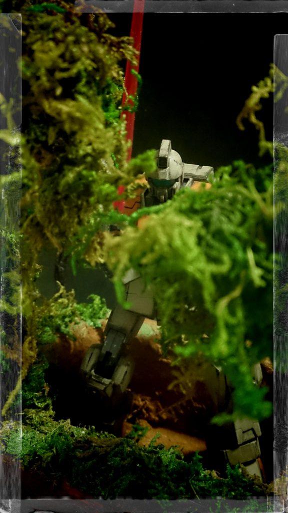 密林のジム