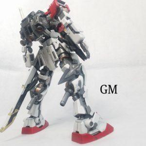 GM×シュヴァルベ・グレイズフレーム
