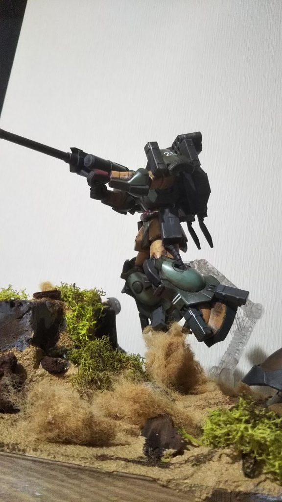 砂漠のコアラ隊
