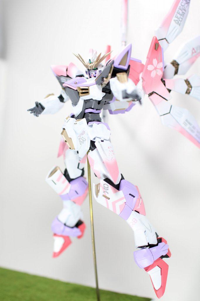 アフェクションガンダム アピールショット6