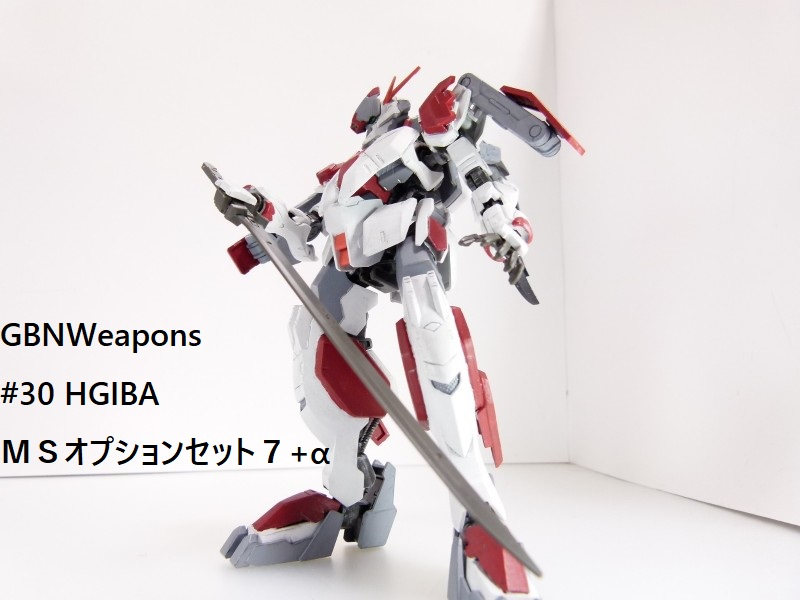 【GBNW】30:HGIBA MSオプションセット7+α