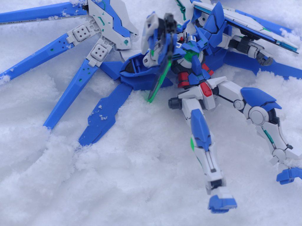 雪原の上で アピールショット1