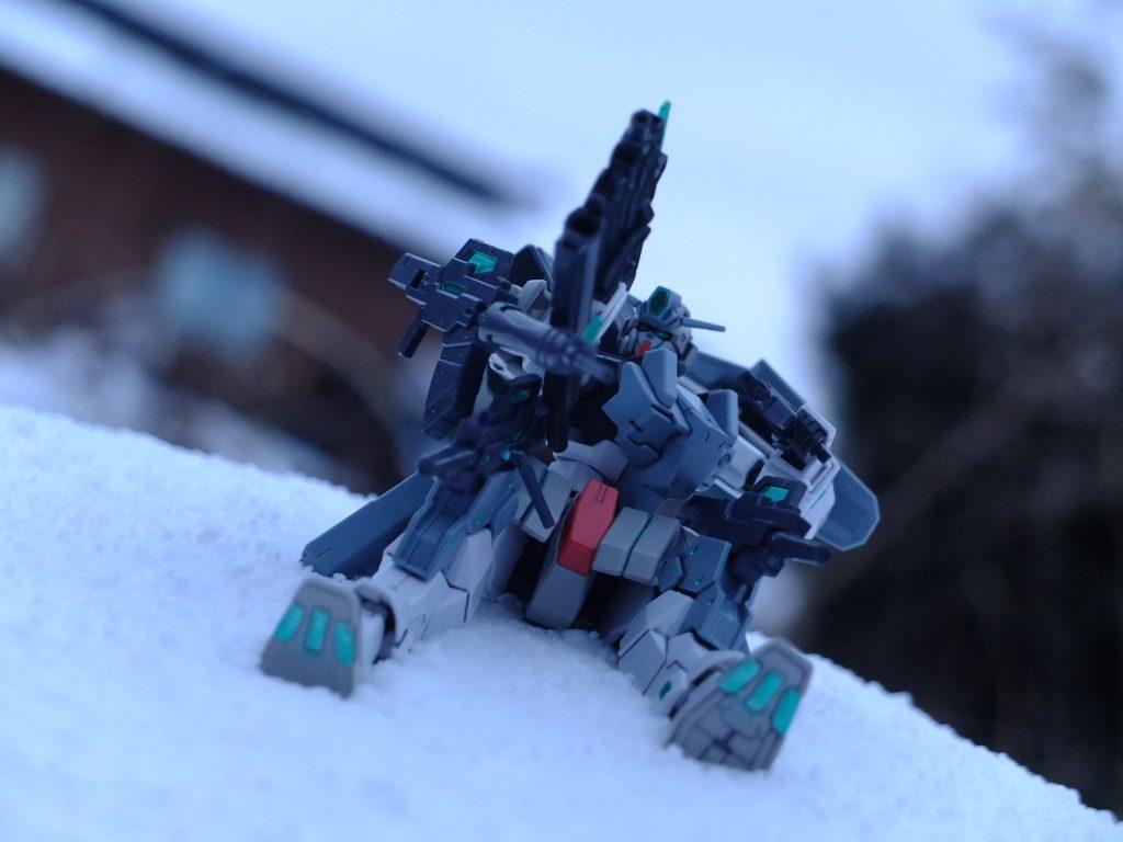 雪原の上で アピールショット7