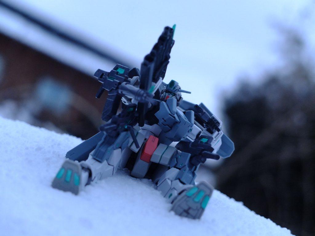 雪原の上で アピールショット4