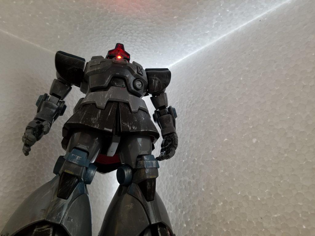 ドム 亜寒帯仕様 アピールショット6