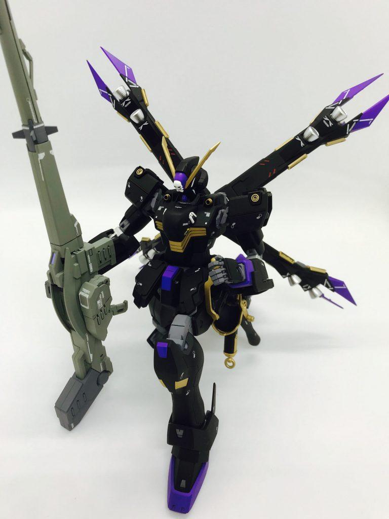 MGクロスボーンガンダムX2改 アピールショット4