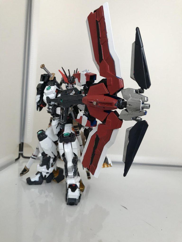 白虎アストレイ アピールショット5