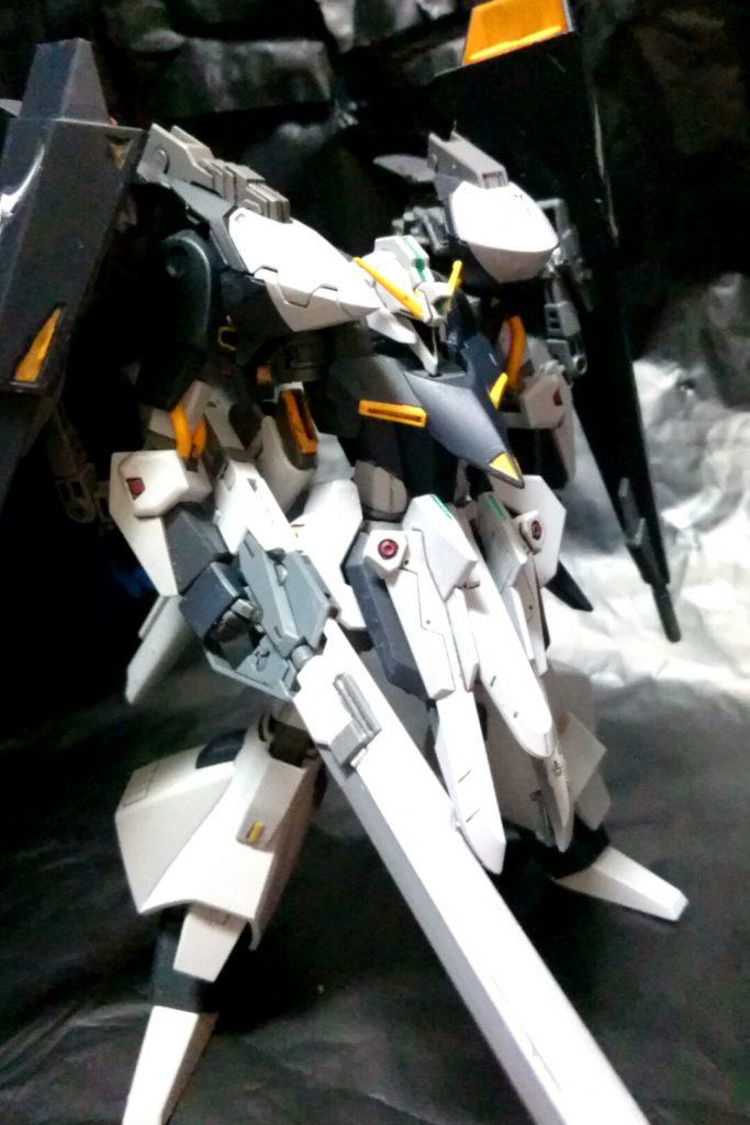 TR-5フライルー アピールショット4
