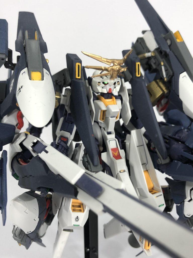 【初投稿】TR-6 [ウーンドウォート・ラー/現地改修仕様] アピールショット1