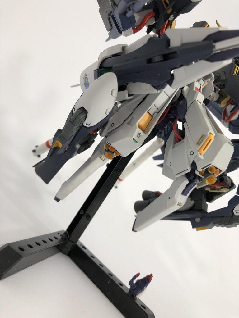 【初投稿】TR-6 [ウーンドウォート・ラー/現地改修仕様] アピールショット8