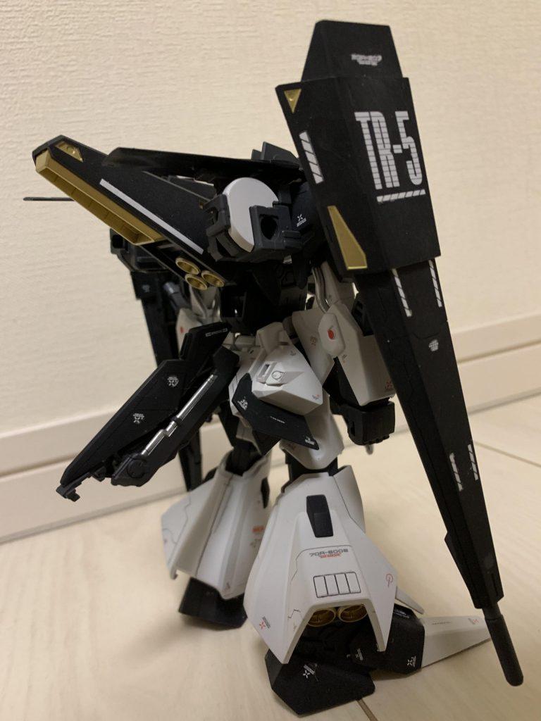 TR-フライルー アピールショット1