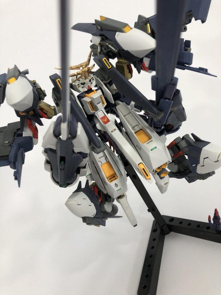 【初投稿】TR-6 [ウーンドウォート・ラー/現地改修仕様] アピールショット7