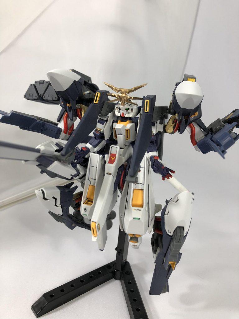 【初投稿】TR-6 [ウーンドウォート・ラー/現地改修仕様] アピールショット3