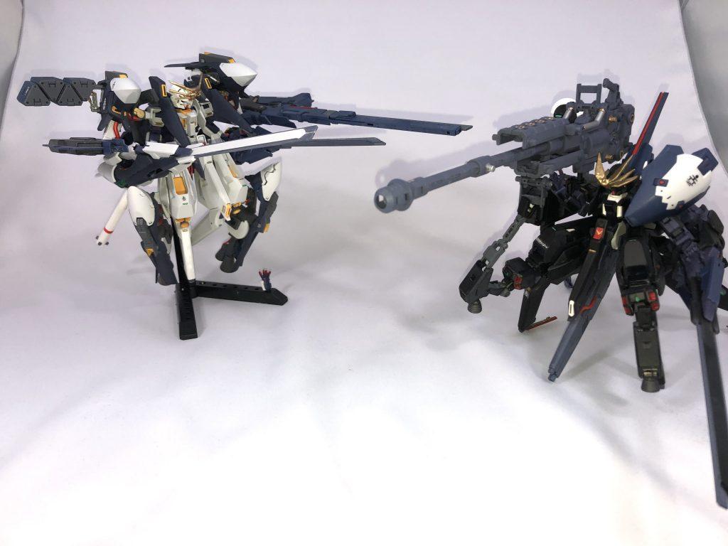 TR-6  [ウーンドウォート/砲撃戦仕様] アピールショット8