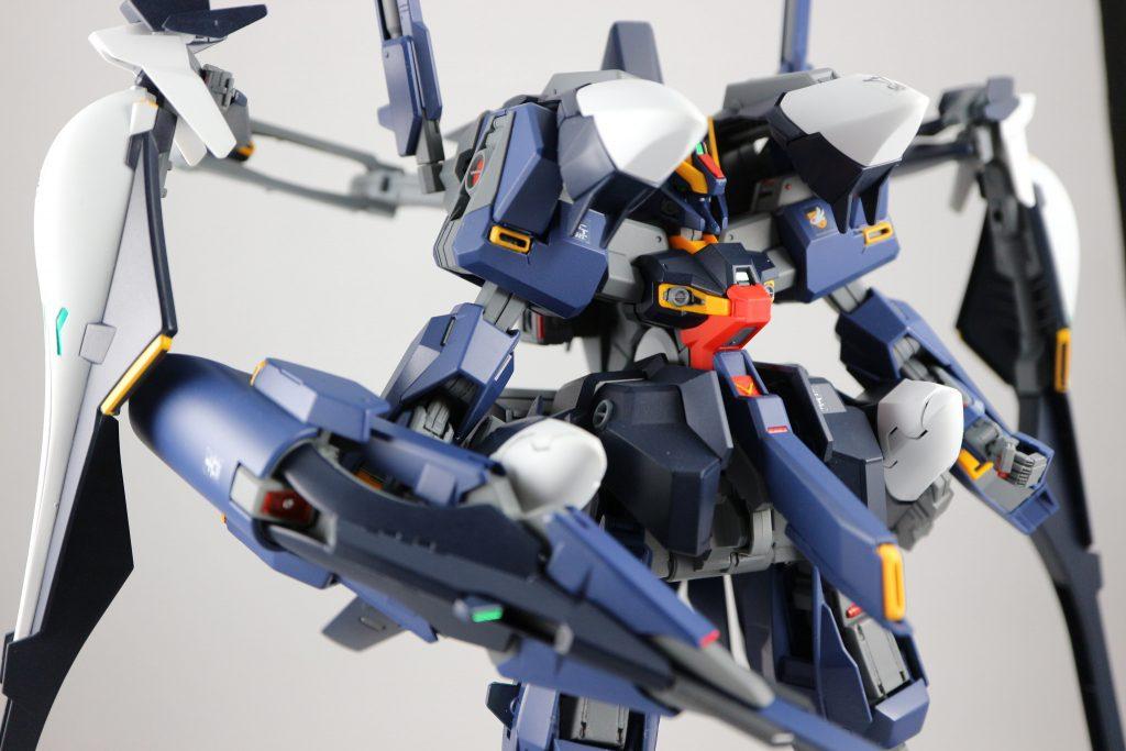 ハイゼンスレイⅡラー G-V脚 アピールショット1