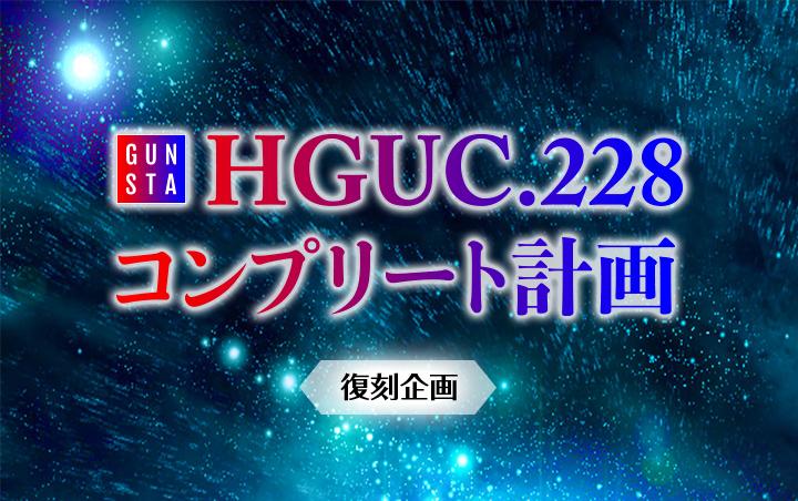 HGUC.228コンプリート計画