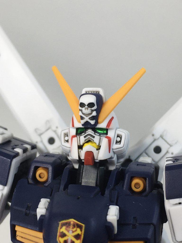 RG クロスボーンガンダムX1 アピールショット1