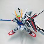 SDEXストライクルージュオオトリ装備(天空のキラver.)
