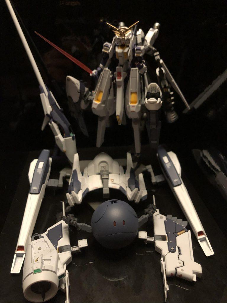TR-6  [ウーンドウォート/要塞攻略仕様] アピールショット4