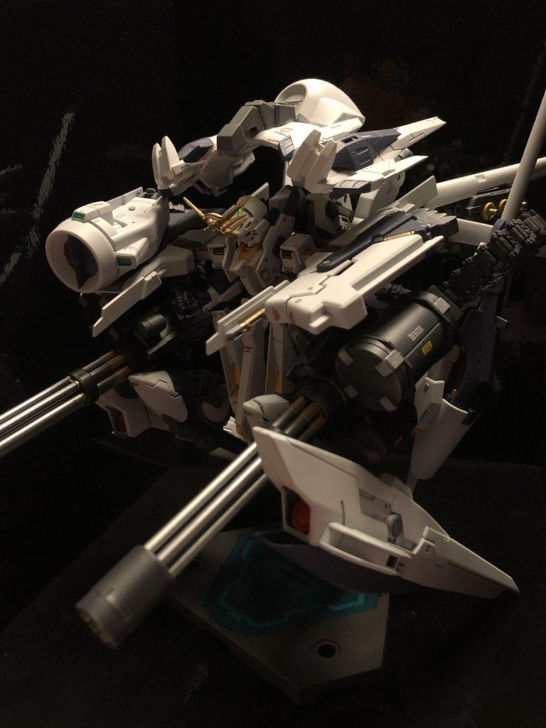 TR-6  [ウーンドウォート/要塞攻略仕様] アピールショット1