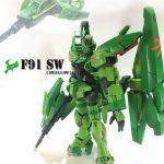 F91 SW[swallow]