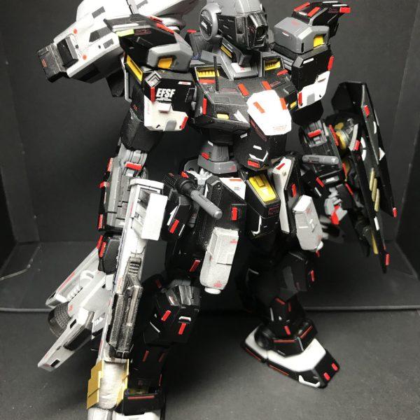 RGM79‐EXAM ジムフェリエラーⅡ