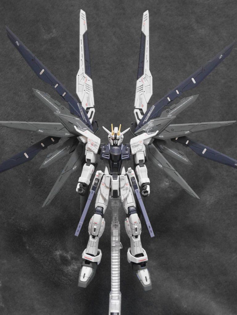 RG ZGMFーX10A  FREEDOM
