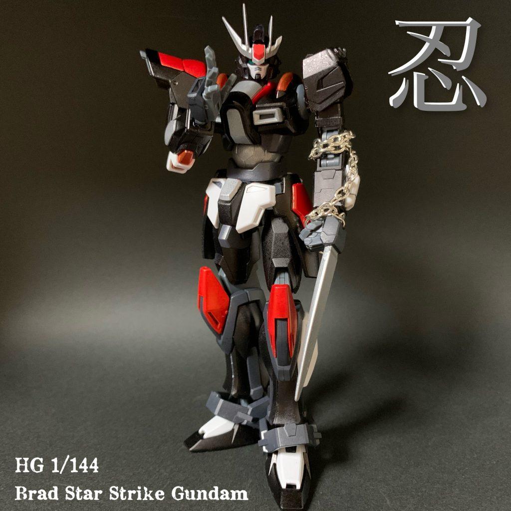 Brad Star Strike Gundam ミキシングビルド