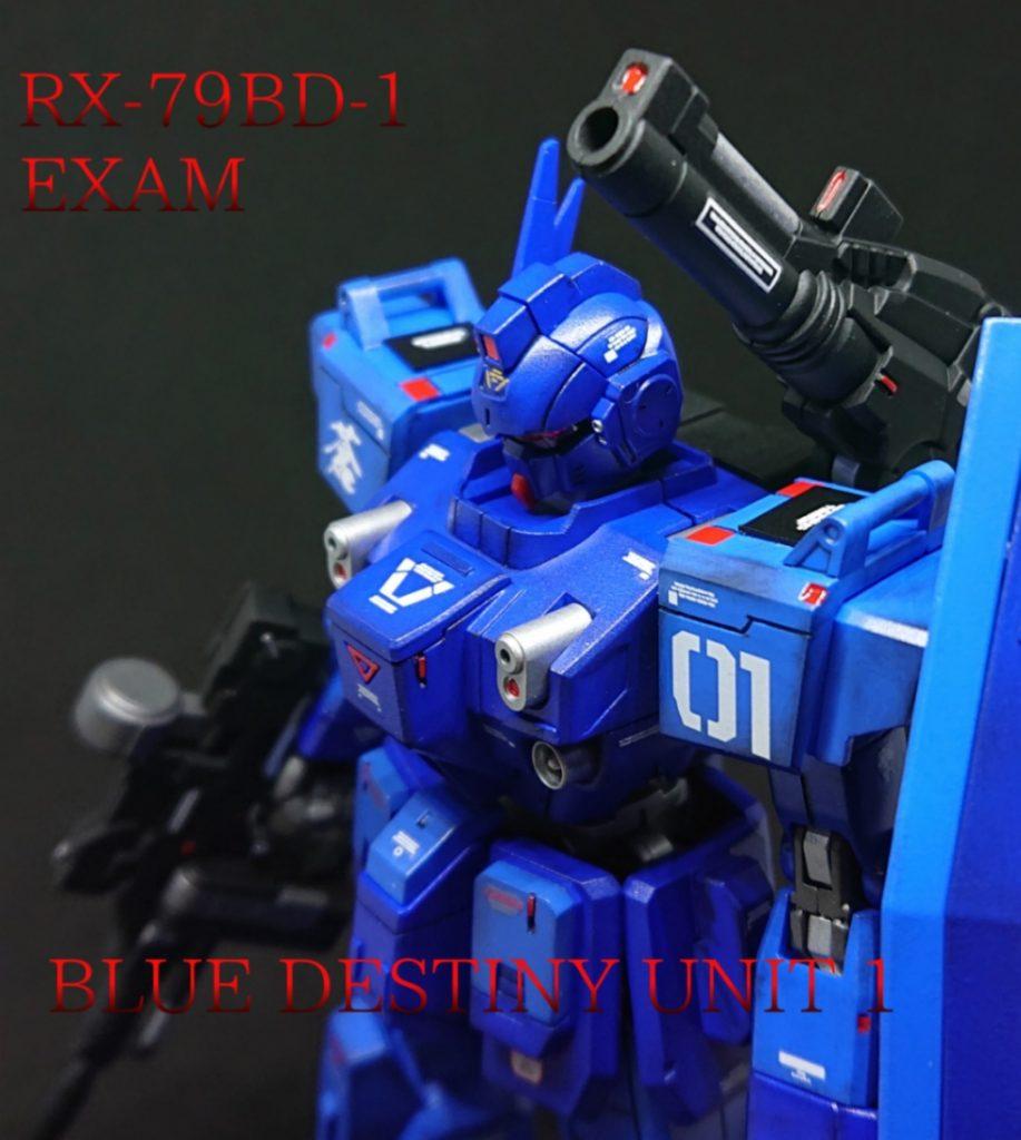 BLUE DESTINY BD1