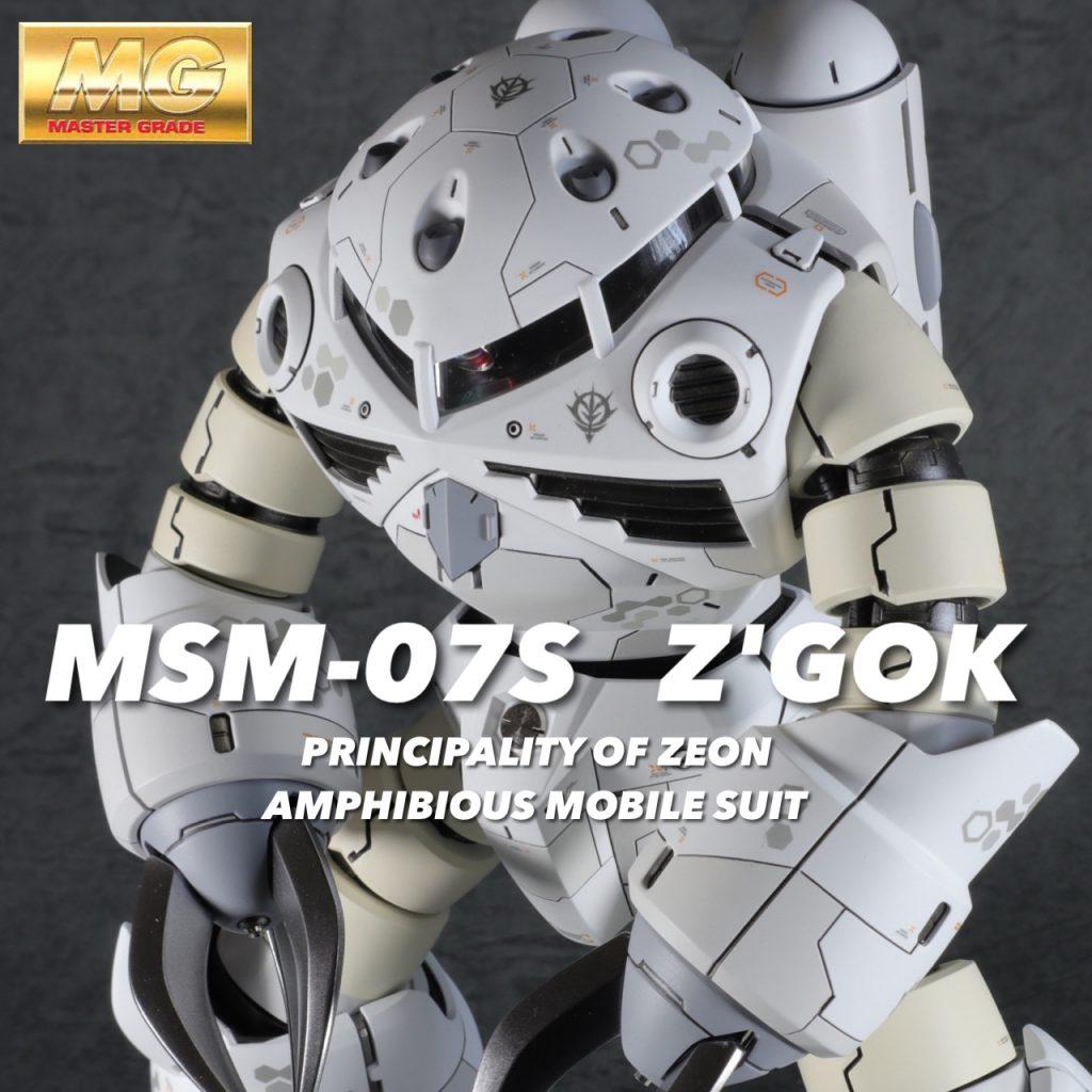 MG1/100 ズゴック冬季迷彩