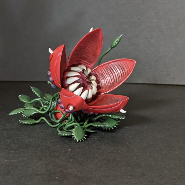 鳳仙花(ホウセンカ)