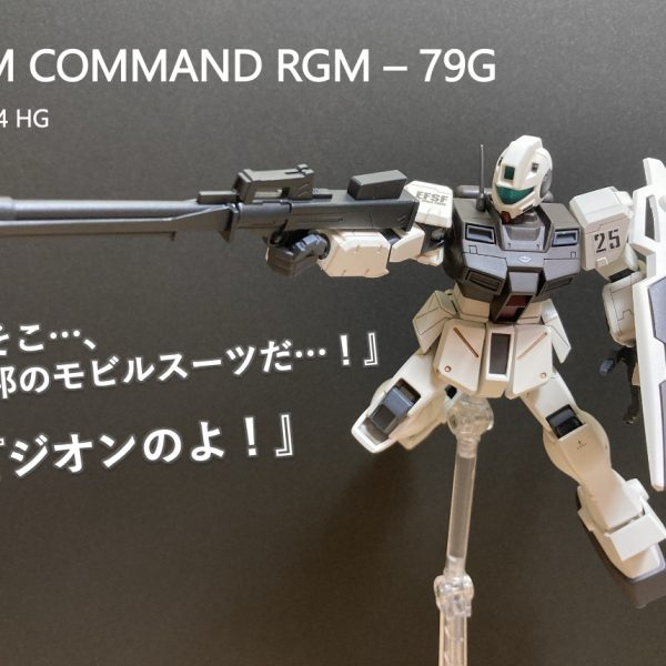 GM COMMAND