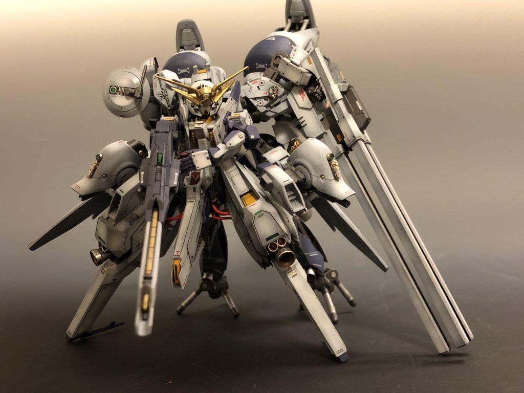 TR-6 [強化型ウーンドウォート/フルドレス高機動形態]
